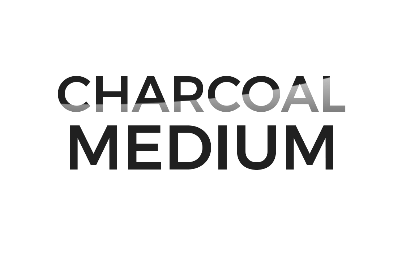Logo Charcoal Medium